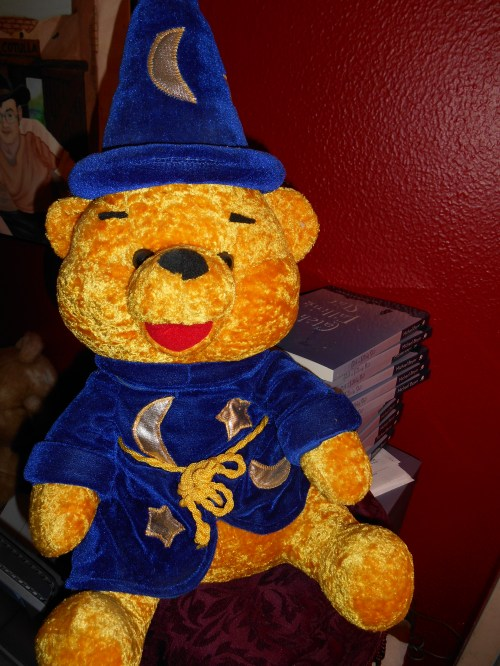 From My Stuffed Animal Collection : Wizard Bear