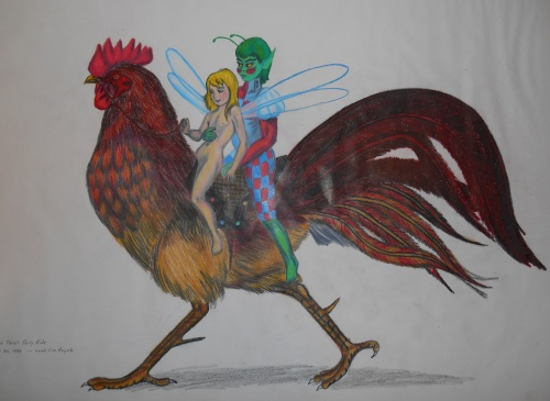 rooster riding