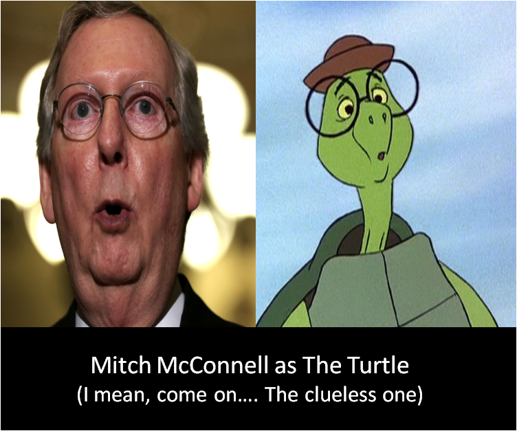 mcconnell turtle