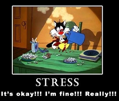 cropped-stress-no-fine-really