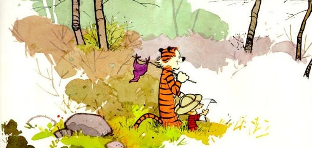 calvin-hobbes-art-before-commerce-1050x500