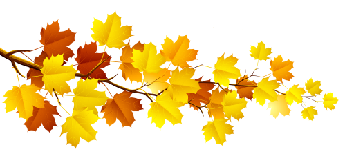 Branch_with_Autumn_Leaves_PNG_Clipart