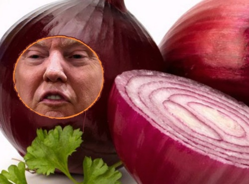 Red-Onion-of-Trumpea