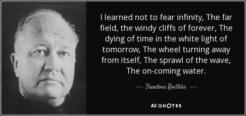quote-i-learned-not-to-fear-infinity-the-far-field-the-windy-cliffs-of-forever-the-dying-of-theodore-roethke-44-38-26